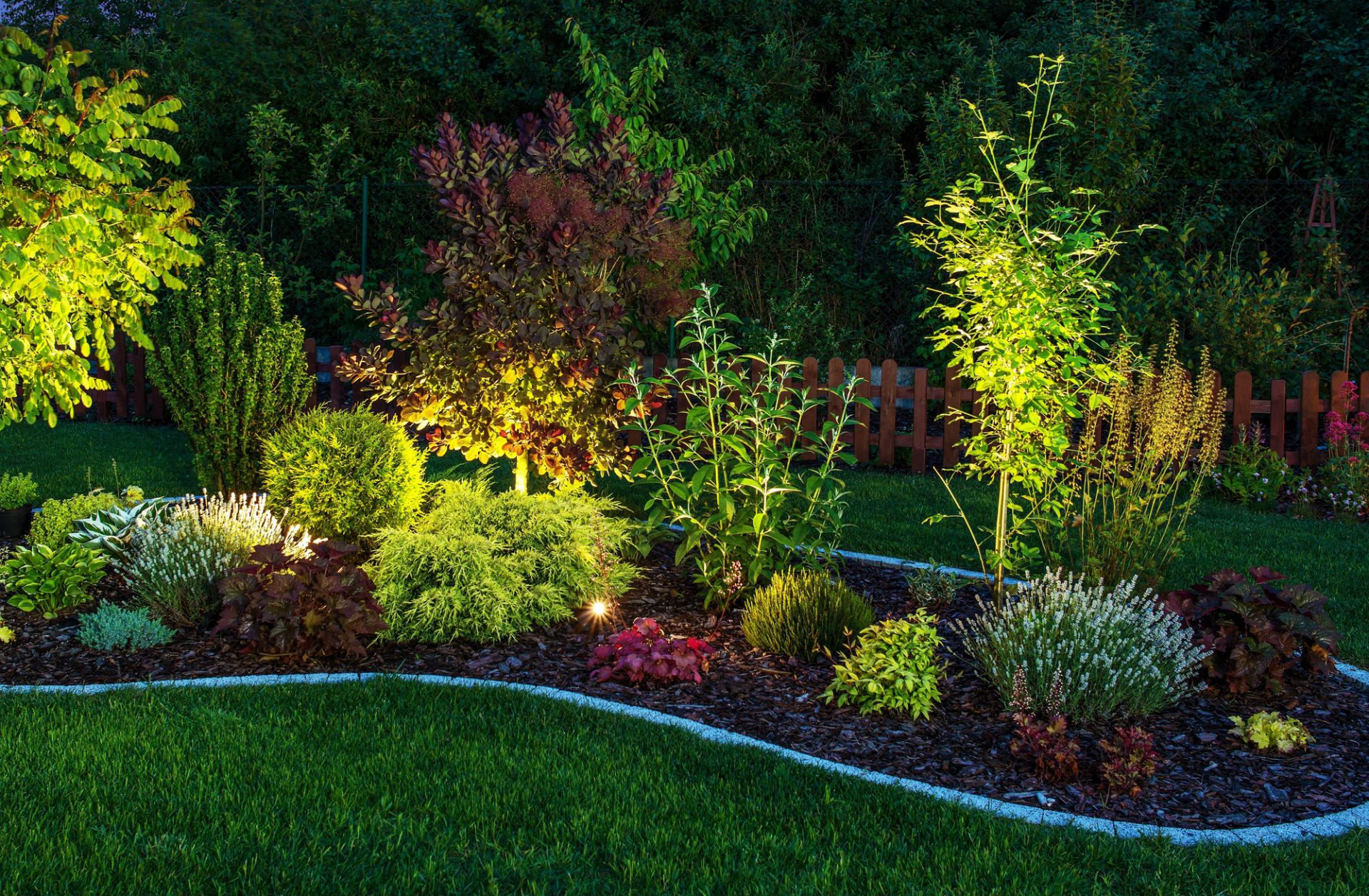 Professional & Affordable<br /> Landscaping Services